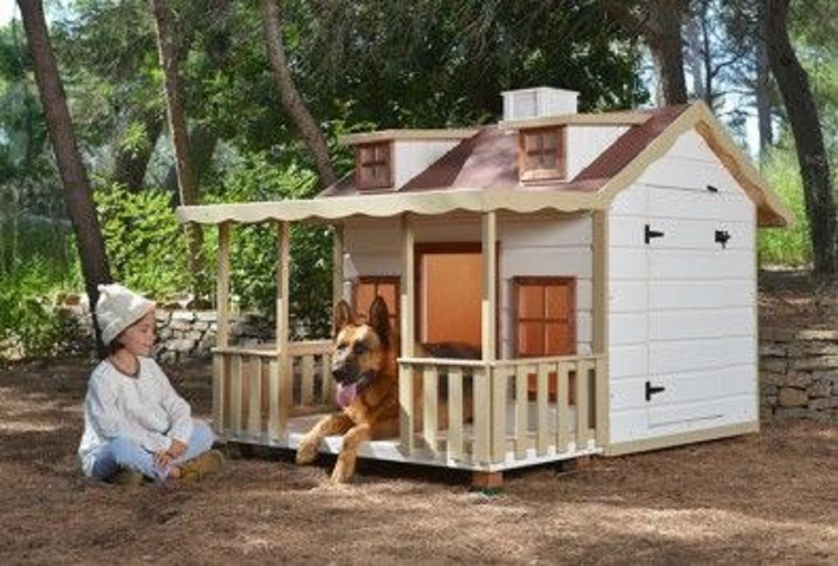 Come Costruire Una Cuccia come costruire cuccia per cani fai da te: tutti i dettagli